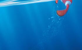 Findet Nemo - Bild 15