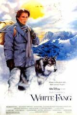 Wolfsblut - Poster