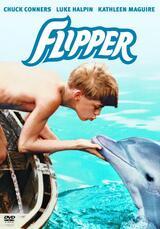 Flipper - Poster