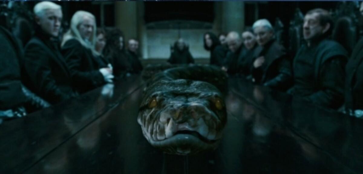 Mit Schlangen Sprechen Wie Harry Potter Lord Voldemort