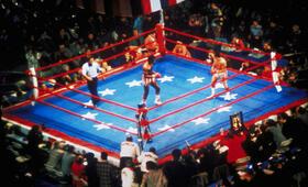 Rocky - Bild 5