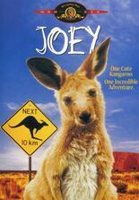 Hier kommt Joey