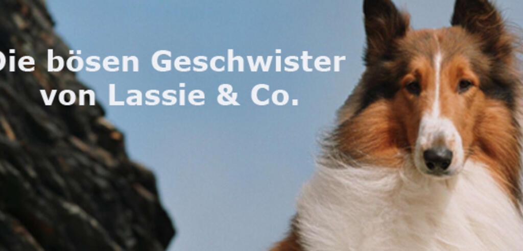 Lassie Kino