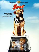 Spot - Ein Hund auf Abwegen - Poster