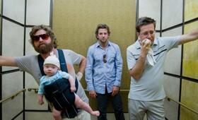 Hangover mit Bradley Cooper, Zach Galifianakis und Ed Helms - Bild 83