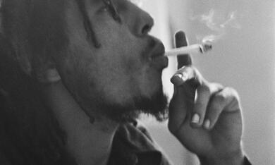 Marley - Bild 5