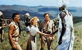 König Salomons Diamanten mit Deborah Kerr und Stewart Granger - Bild 2