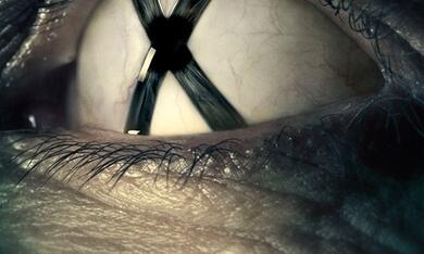 Akte X - Die unheimlichen Fälle des FBI - Bild 2