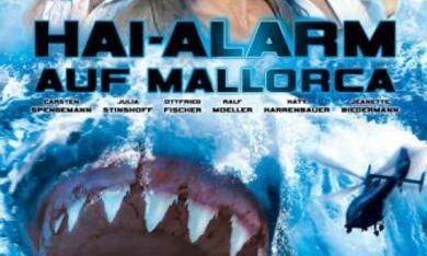Hai-Alarm auf Mallorca - Bild 7