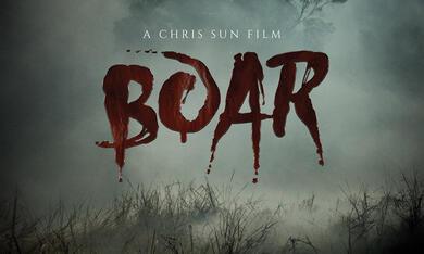 Boar - Bild 12