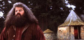 Rubeus Hagrid, Wildhüter und Tierwesen-Liebhaber