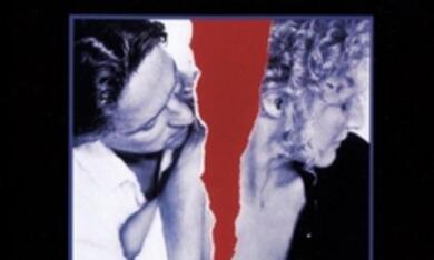 Eine verhängnisvolle Affäre - Bild 6