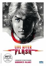 Life After Flash - Poster