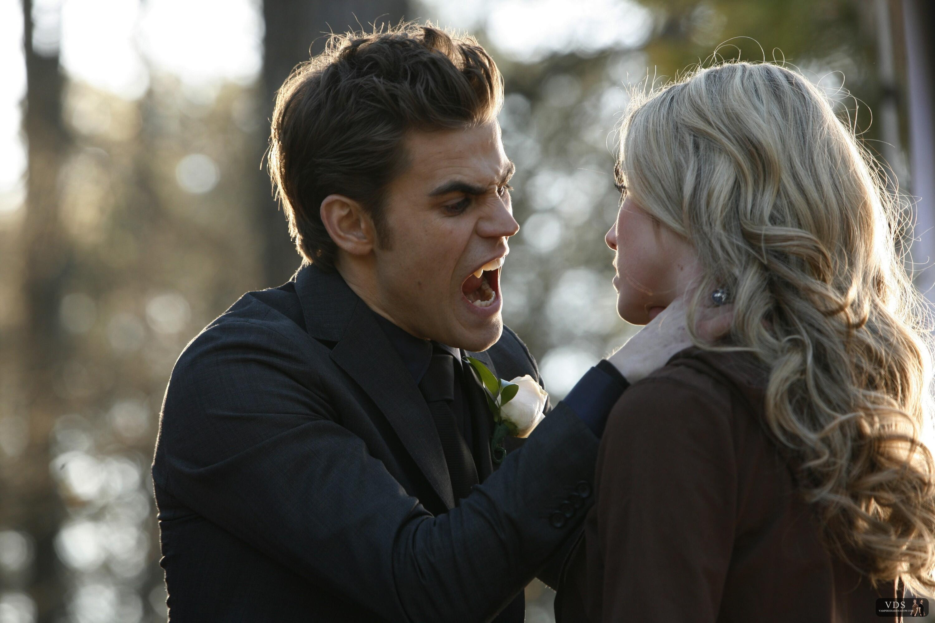 Vampire Diaries Staffel 1 Bs