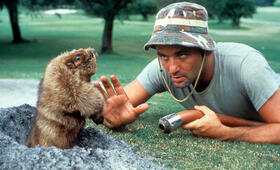 Bill Murray in Caddyshack - Bild 118