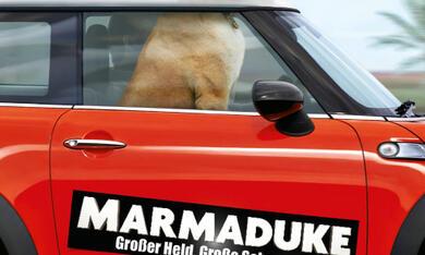 Marmaduke - Bild 1