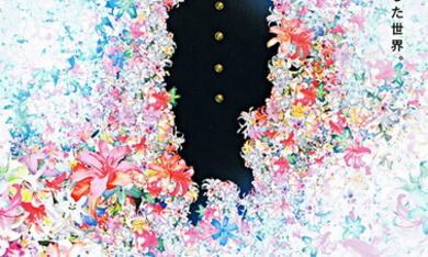 Colorful - Bild 7
