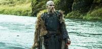 Bild zu:  Floki aus Vikings