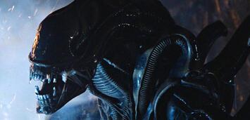 Bild zu:  Aliens
