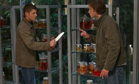 Staffel 6 mit Jensen Ackles und Jared Padalecki - Bild 78