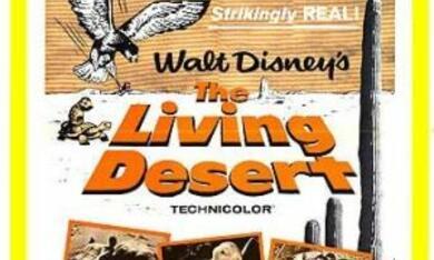 Die Wüste lebt - Poster - Bild 8