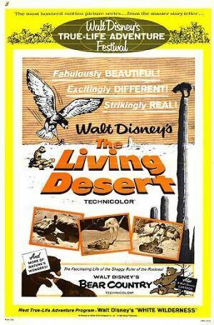 Die Wüste lebt - Poster