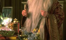 Harry Potter und der Stein der Weisen mit Richard Harris - Bild 13
