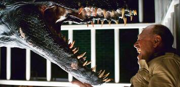 Bild zu:  Jurassic Word 2: Das gefallene Königreich