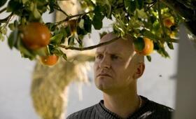 Adams Äpfel - Bild 5