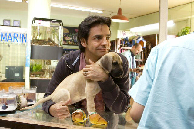 Eugenio Derbez 3