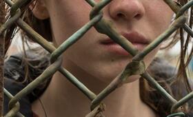 The Survivalist mit Mia Goth - Bild 19