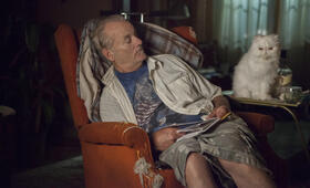 St. Vincent mit Bill Murray - Bild 31