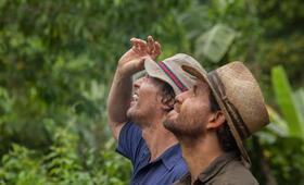 Gold mit Matthew McConaughey und Édgar Ramírez - Bild 7