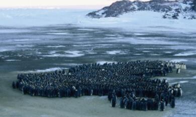 Die Reise der Pinguine - Bild 3