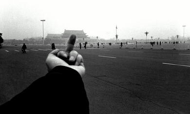 Ai Weiwei: Never Sorry - Bild 10