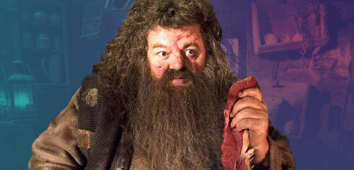 Harry Potter Besuch Wie Hagrid In Phantastische Tierwesen 3 Zuruckkehren Kann
