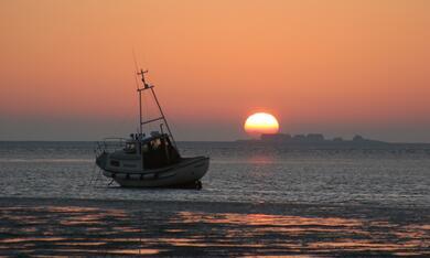 Die Nordsee - Unser Meer - Bild 4