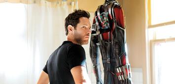 Bild zu:  Paul Rudd in Ant-Man