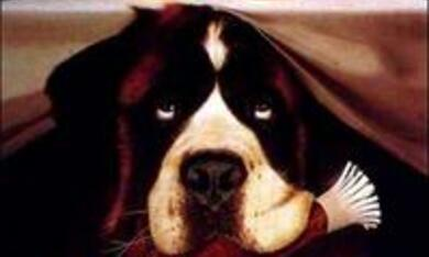 Ein Hund namens Beethoven - Bild 3