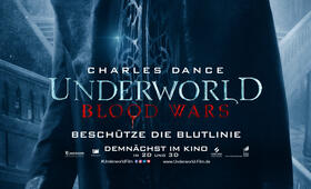 Underworld 5: Blood Wars mit Charles Dance - Bild 32