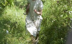 Abbitte mit Saoirse Ronan - Bild 13