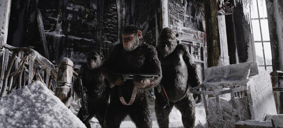 Planet Der Affen 3 Hd Stream