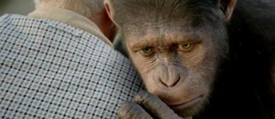 Planet der Affen: Prevolution hat gute Chancen auf eine Nominierung.
