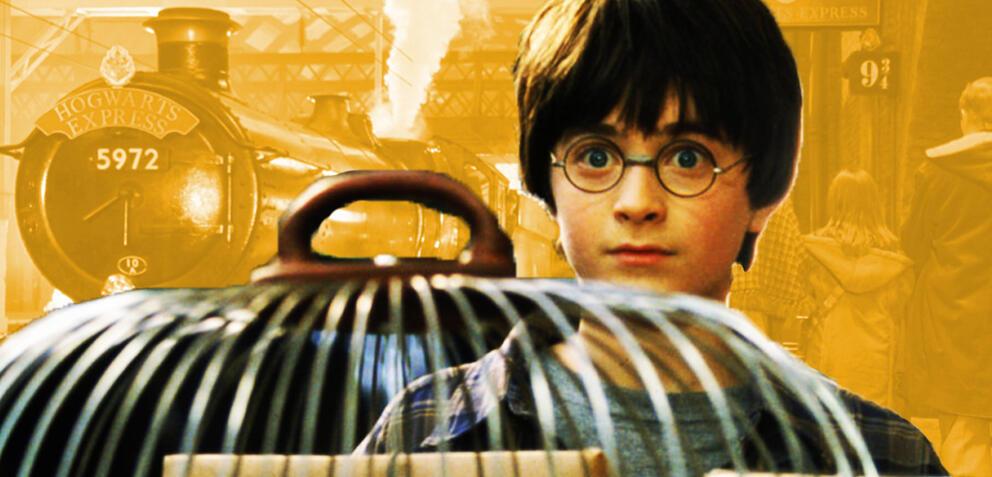 Harry Potter-Fans werden vonPhantastische Tierwesen 2-Stars überrascht