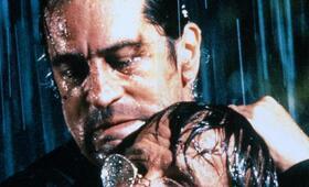 Kap der Angst mit Robert De Niro und Nick Nolte - Bild 185