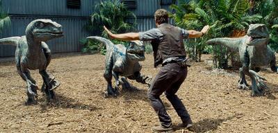 Jurassic World: Chris Pratt und die Raptoren