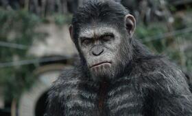 Andy Serkis in Planet der Affen: Prevolution - Bild 28