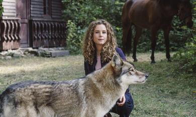 Reiterhof Wildenstein - Jacomo und der Wolf - Bild 4