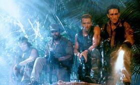 Predator mit Arnold Schwarzenegger - Bild 23