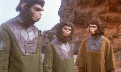 Planet der Affen - Bild 11